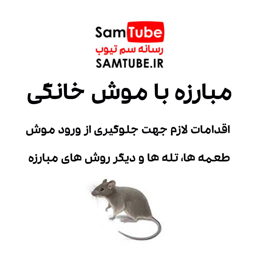 مبارزه با موش خانگی